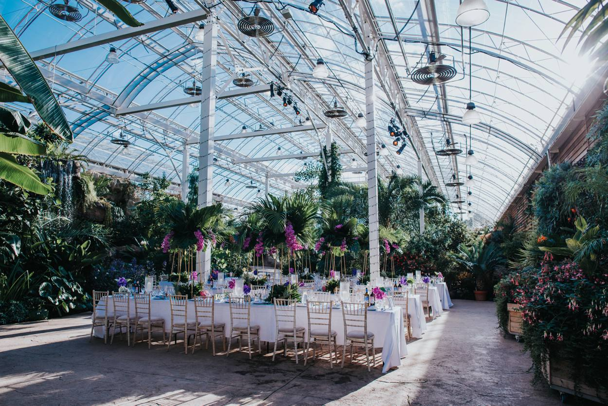 tropical themed wedding at RHS wisley
