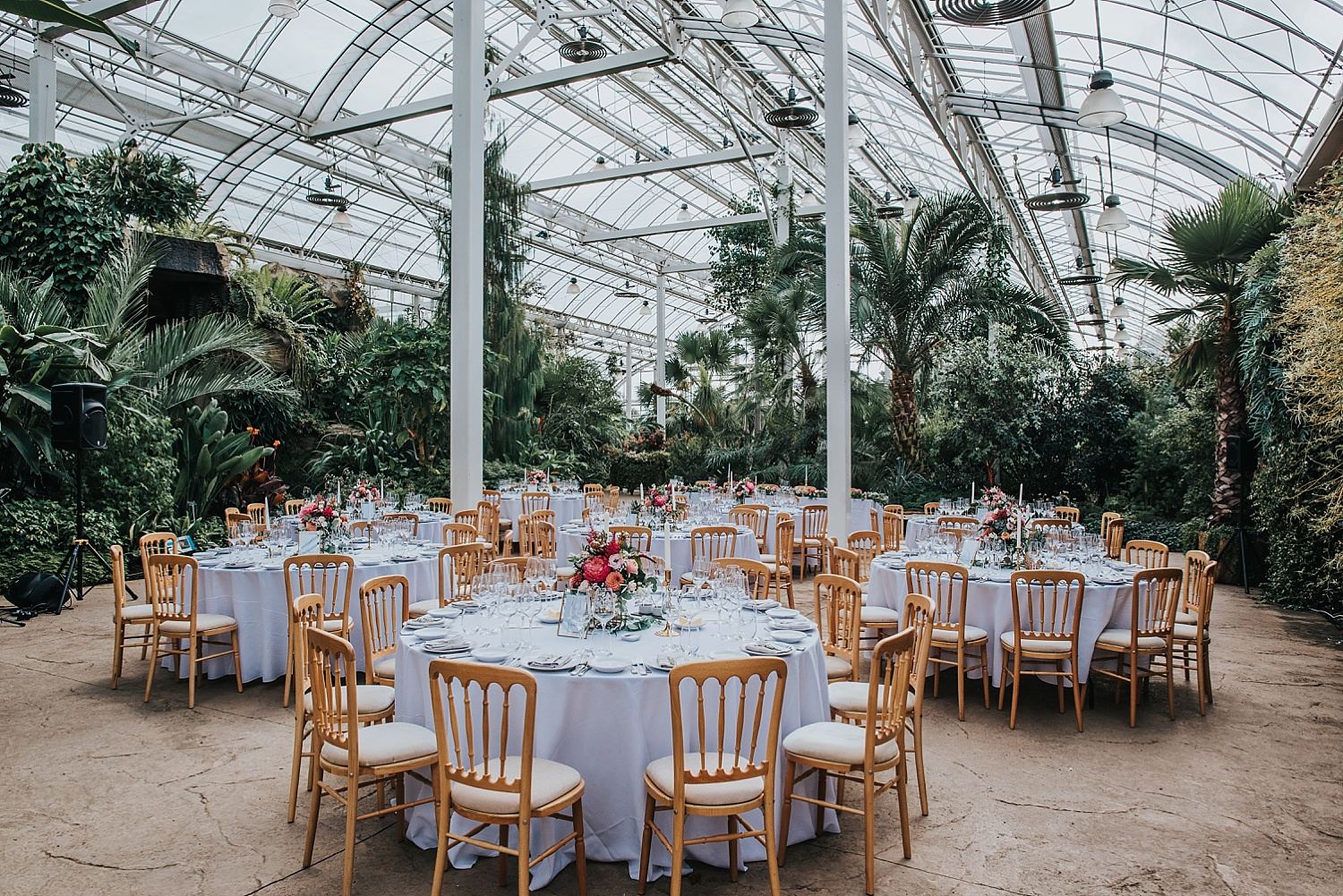 wedding setup inside RHS Wisely tropical glasshouse