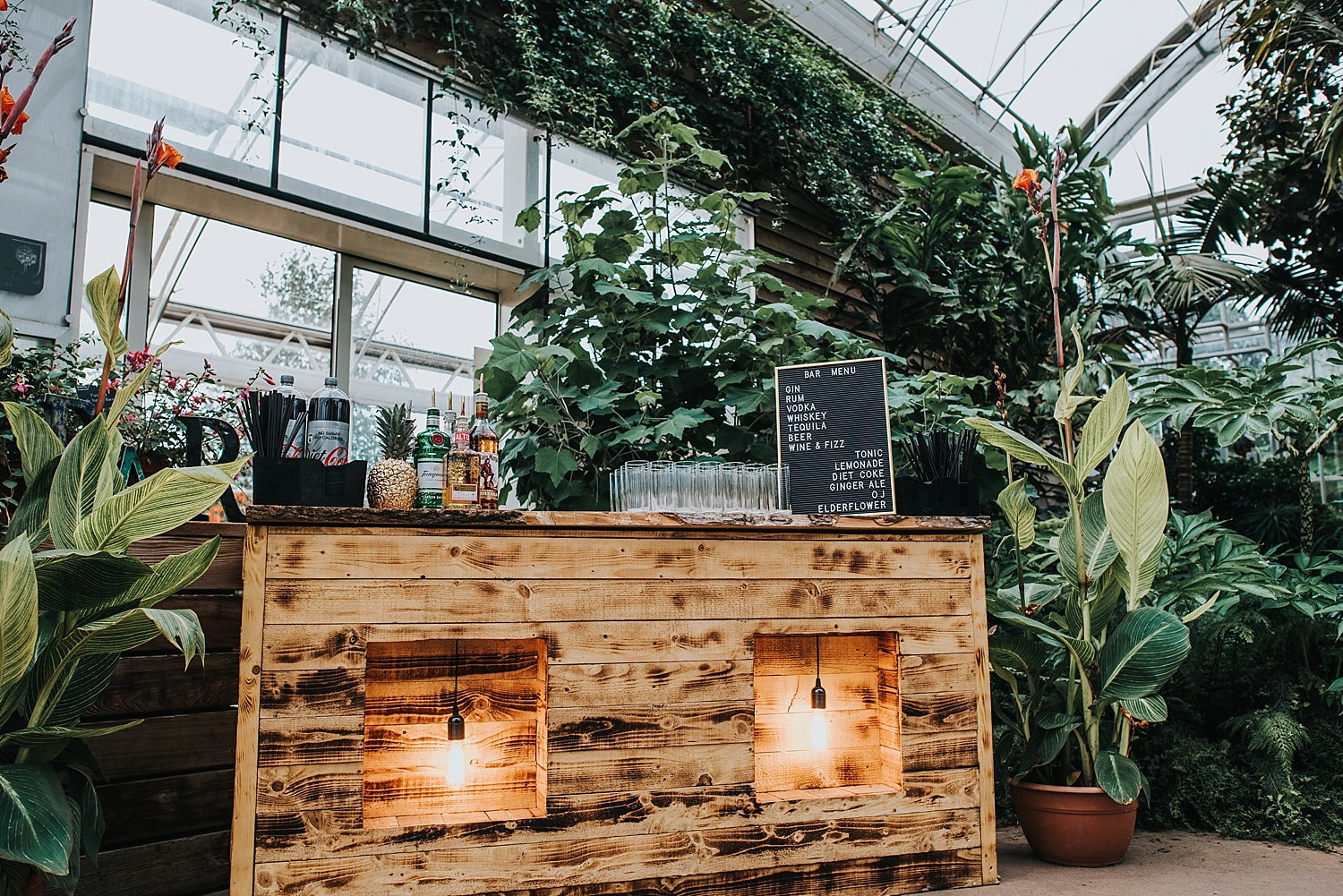 DIY pallet bar set up inside RHS Wisley glasshouse