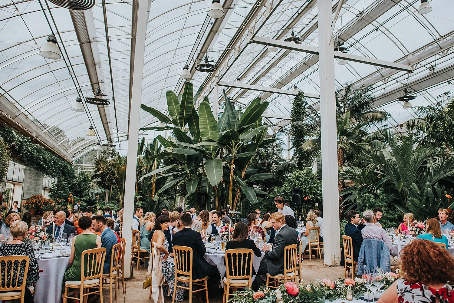 wide shot of RHS Wisley tropical glasshouse